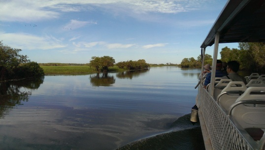 Yellow River Billabong